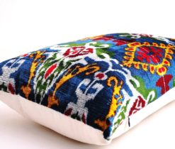 designer velvet cushion