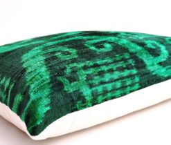 designer velvet pillow
