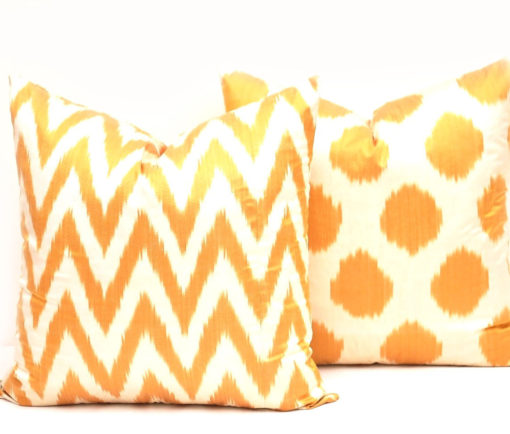 Two Decorative Ikat Pillow Cover