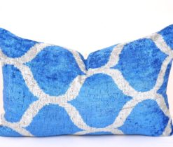 Blue Farmhouse Decor Velvet Pillow
